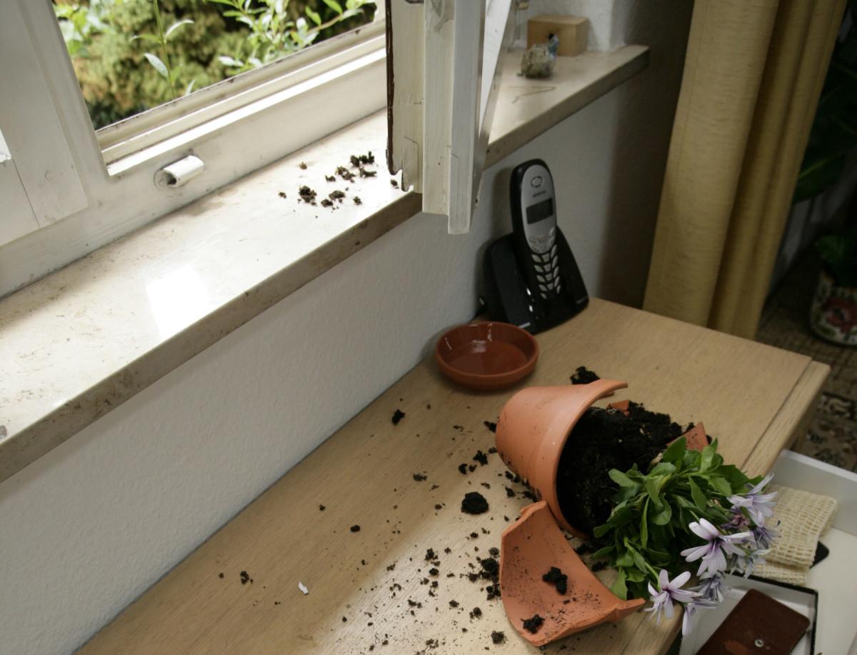 Offenes Fenster, Zerbrochener Blumetopf