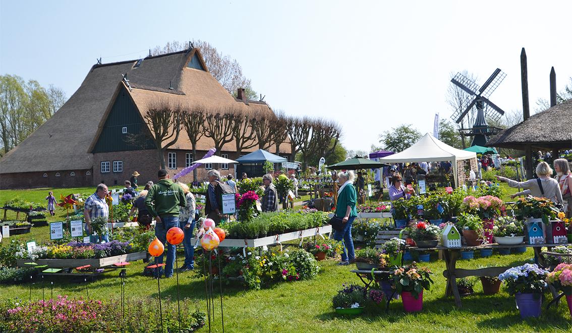 Gärtnermarkt Molfsee