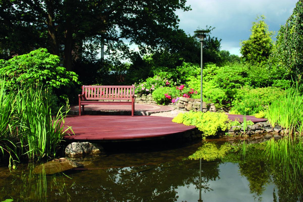 Holzsteg Am Teich