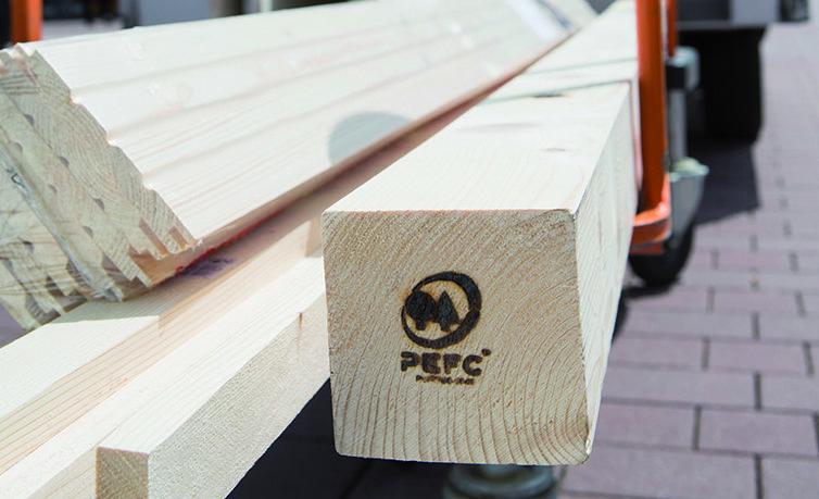 Wissenswertes über Holz