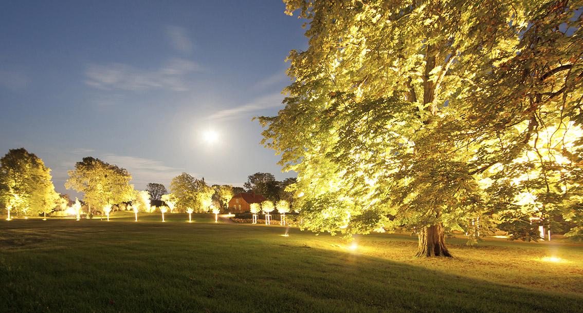 Beleuchtung Im Park