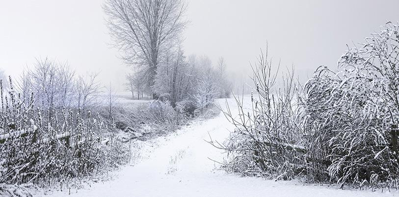 Behagliches Wohnen Im Winter