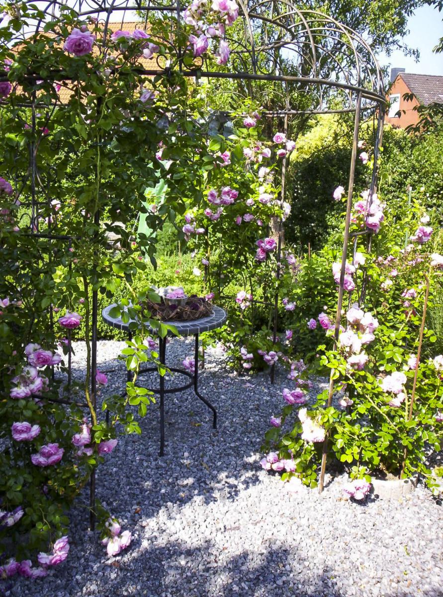 Grüner Norden – Vielfältige Gärten