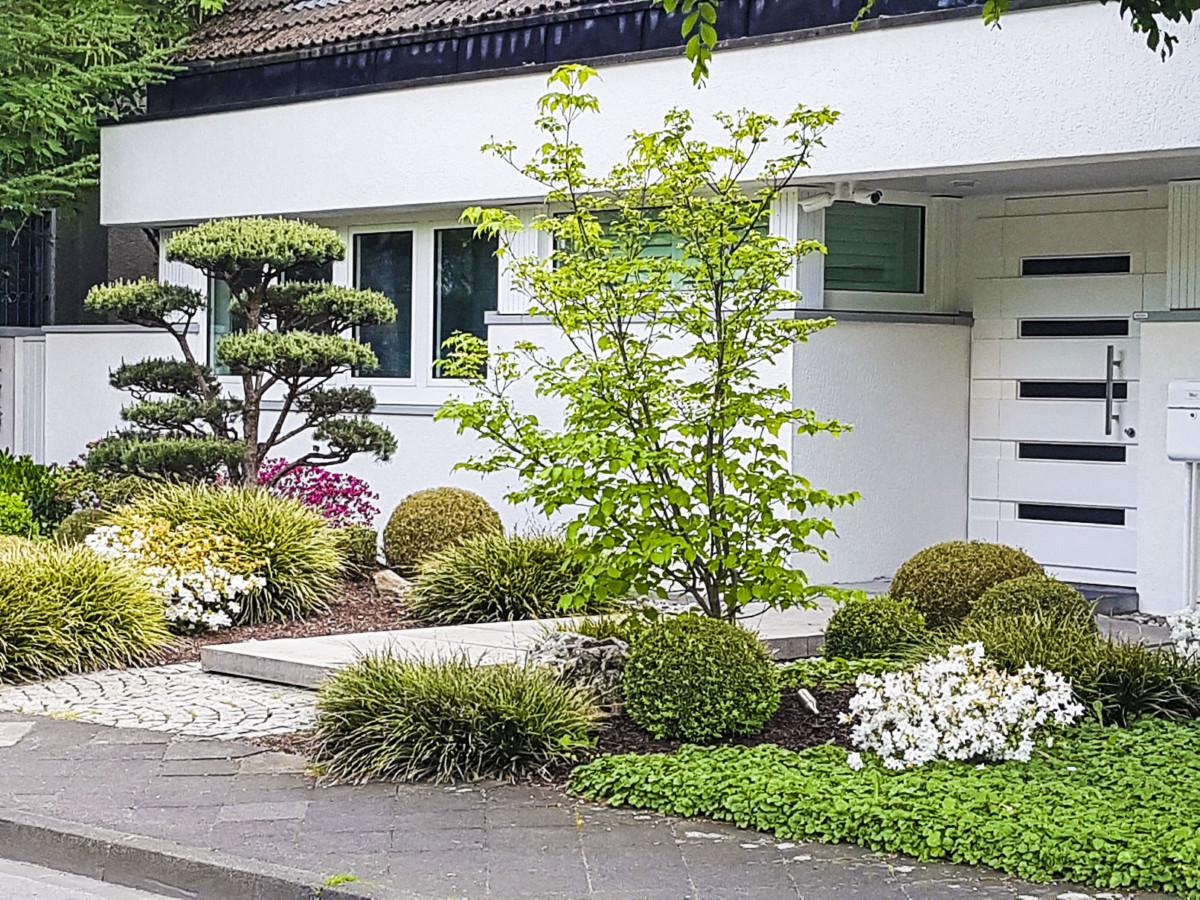 Rettet den vorgarten das eigene haus for Gartengestaltung nordseite