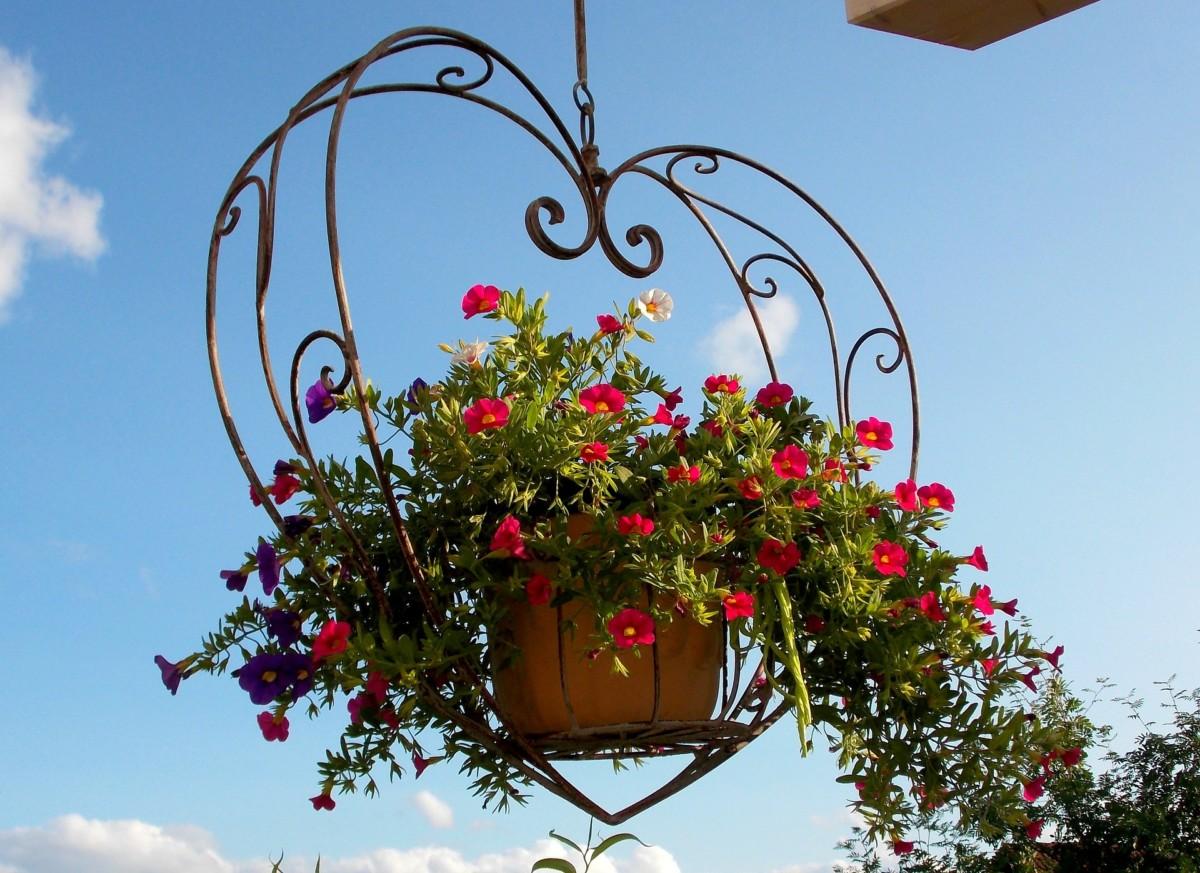 5 Tipps Für Einen Schönen Garten Oder Balkon